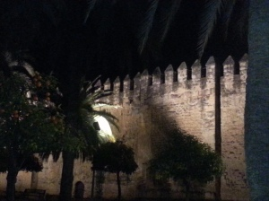 Palace of the Christian KIngs (Alcazar) by night.
